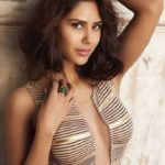 Sonam Bajwa Body Measurements Weight Height Bra Figure Size & More